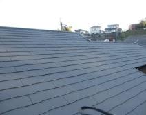 屋根:特殊セラミック ガイナ 仕様!の写真